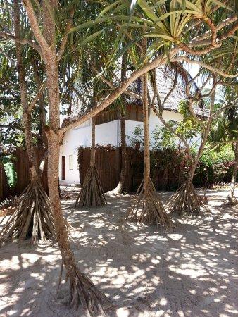 Mchanga Beach Resort : recrption