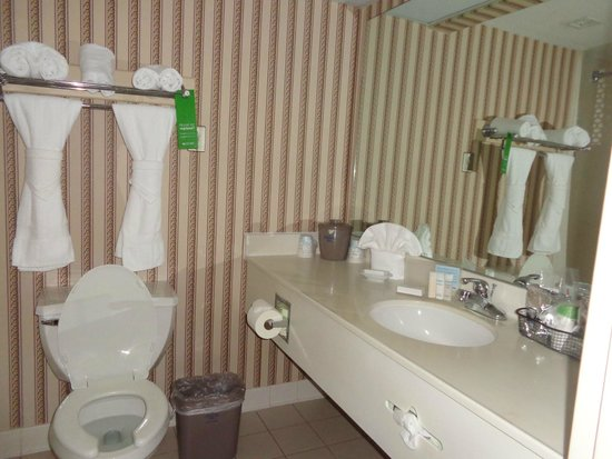 Hampton Inn Waco North: bathroom