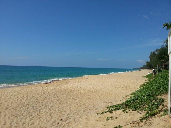 Mai Khao Beach: mai1