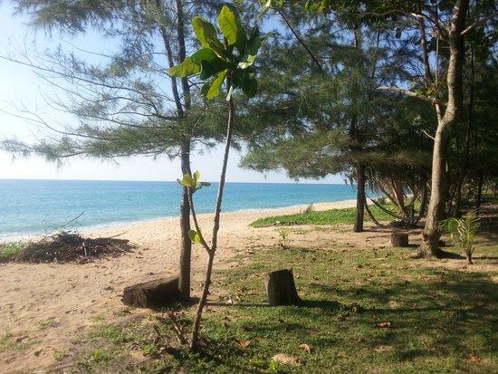 Mai Khao Beach: mai2