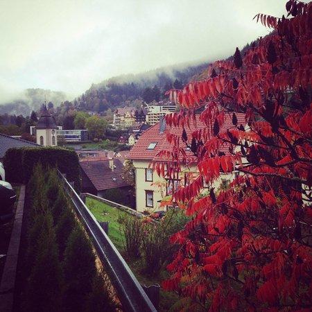 Schwarzwald Panorama: Вид из отеля