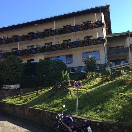 Schwarzwald Panorama: фото самого отеля