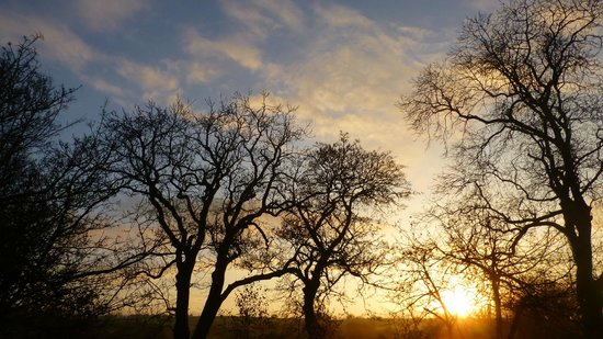 Penbontbren Luxury Bed and Breakfast: Sun Rise