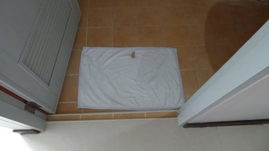 ناراوان هوتل: bath mat