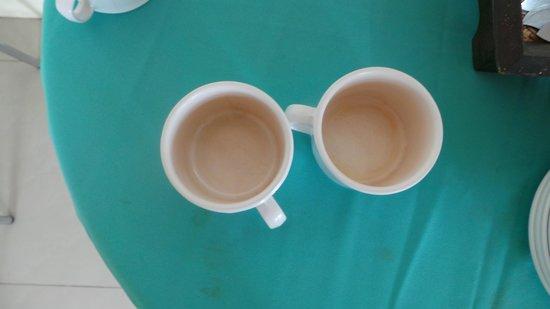 ناراوان هوتل: cups