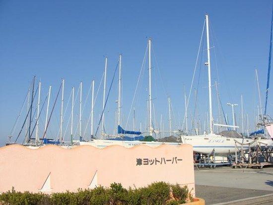 Tsu Yacht Harbor: 入り口
