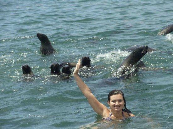 Isla de Lobos: parada para mergulho