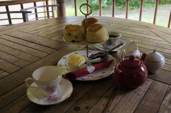 Viv's Tea Garden: A very nice Cream Tea