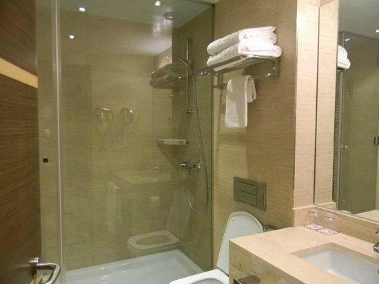 Hotel Claridge : baño