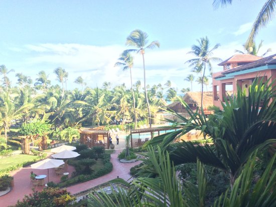 VIK Hotel Cayena Beach: A view of the resort from my room