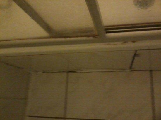 Hotel Tyros - am Weidendamm : Schimmel an der Duschkabine