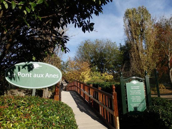 Lama picture of jardin d 39 acclimatation paris tripadvisor - Pavillon des oiseaux jardin d acclimatation ...