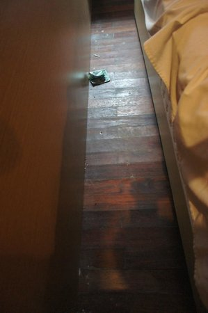 Bisma Sari Resort: under the bed