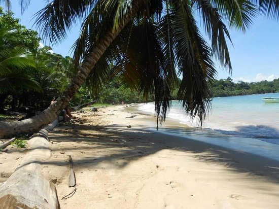 Bocas Villas: Praia