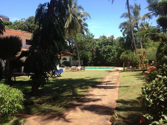 Mombasa Backpackers : Pool area
