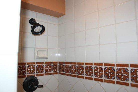 La Posada Lodge and Casitas: Rain shower head