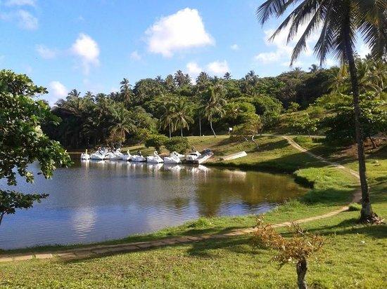 Parque Metropolitano de Pituaçu