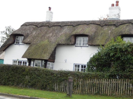 New Forest Platinum Day Tours: Thatched-roof cottages