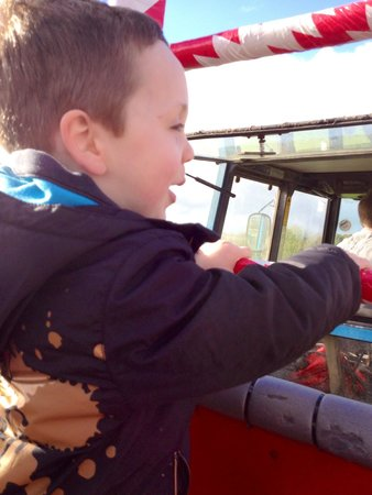 Rare Breeds Centre: Tractor trailer ride - very much enjoyed by my son! Wonderful idea...