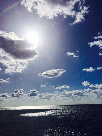 Beautiful Ocean Views beautiful ocean views - picture of hotel tiber fiumicino