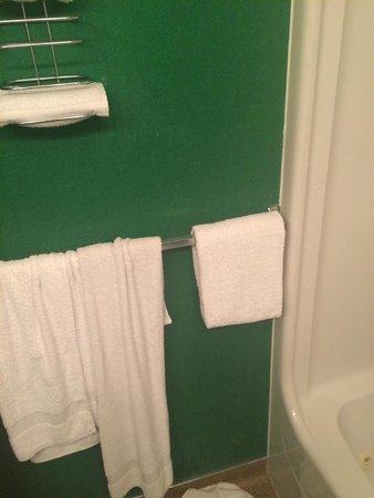 Dude Rancher Lodge: The bathroom wall