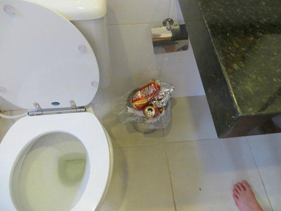 Pura Vida Hostel: no toilet brush