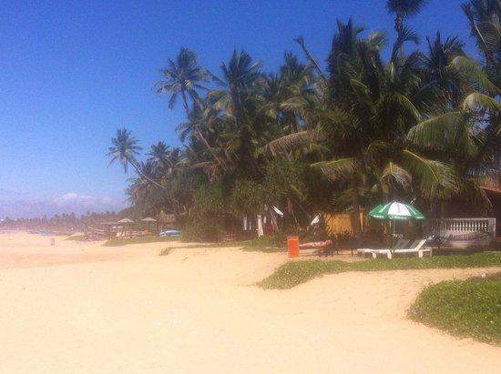Jasmine Garden Beach Guest House and Restaurant