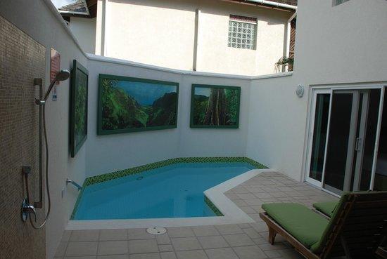 Calabash Luxury Boutique Hotel & Spa : Plunge pool