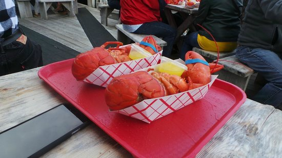 Roy Moore Lobster Co: Lovely bugs ready for eating! leave the butter ... they don't need it! neither does your waistli