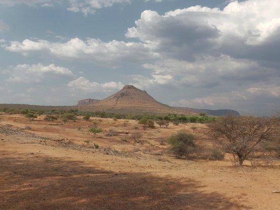 Marataba Safari Lodge: view from lodge