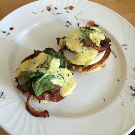 Eggs Benadict room service breakfast