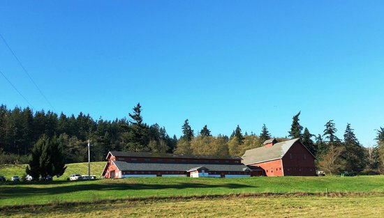 Canopy Tours Northwest: Canopy Tours Barn as you come up the driveway