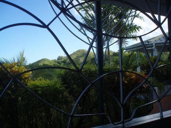 Top O' Tobago Villa & Cabanas: View from the patio