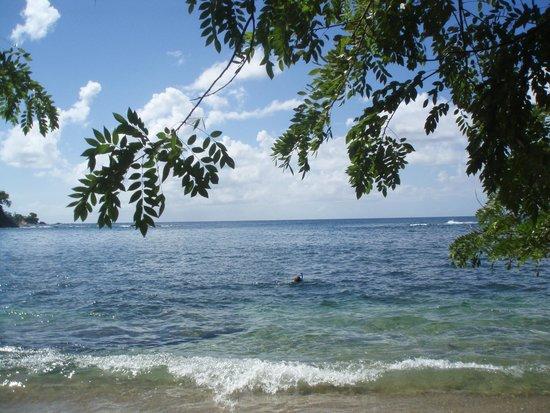 Top O' Tobago Villa & Cabanas: The local cove