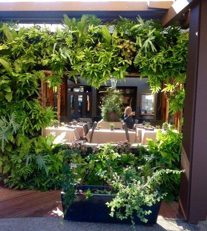 Crush - Solana Beach : Enjoy their patio for lunch