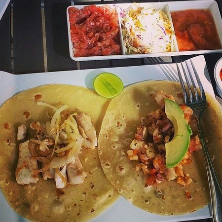 Blue Fish Cabo Seafood : Tacos