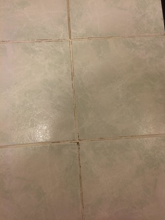 Comfort Inn Palo Alto: Mold in the grout of the bathroom floor