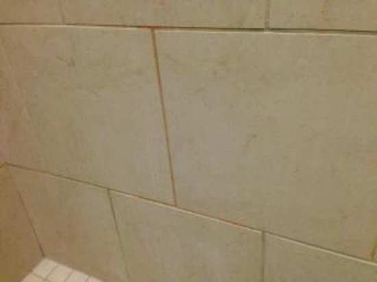 SpringHill Suites Birmingham Downtown at UAB: tile mold