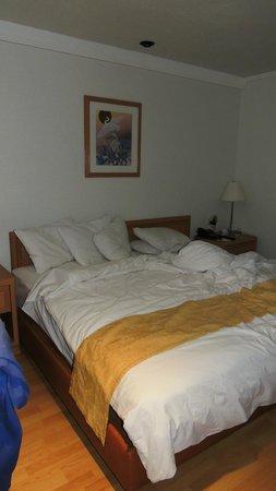 Hotel PF: Habitación