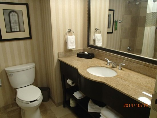 Hampton Inn & Suites Albany - Downtown: Bathroom