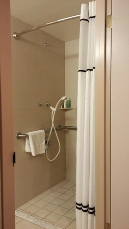 Lake Tahoe Resort Hotel: ADA Roll In Shower
