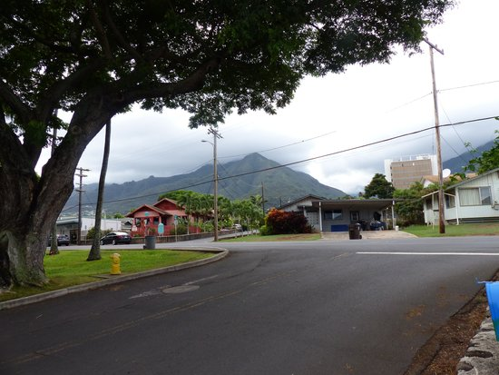 Wailuku Guesthouse: one view from the driveway
