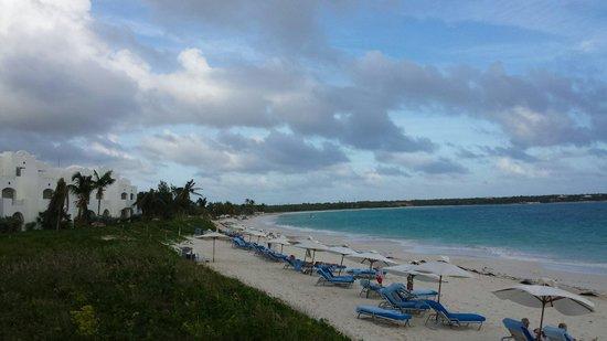 CuisinArt Golf Resort & Spa: Beautiful beach!