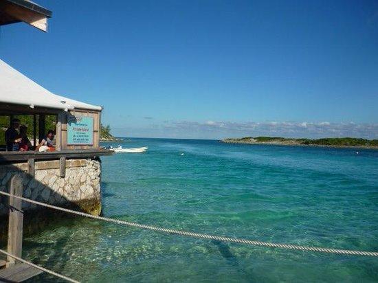 Exuma Cays Land and Sea Park: Exuma is the Best!