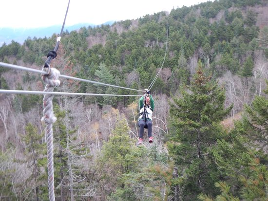 Bretton Woods Canopy Tour: Great time
