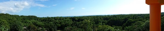 Blue Hole Mineral Spring : View from resort roof