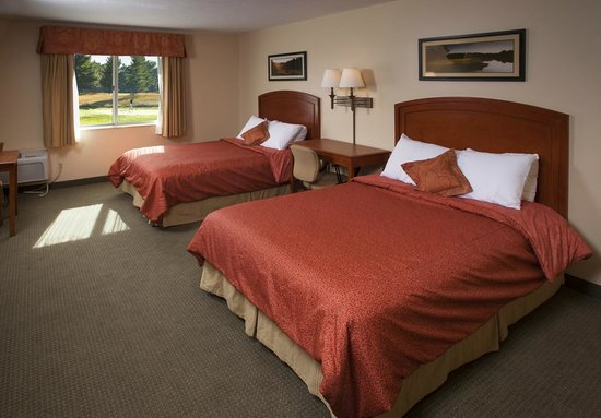 Inn at Manistee National Golf & Resort: All Standard rooms feature two Queen Beds