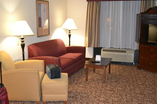 Wingate by Wyndham Atlanta Galleria Center: Living room