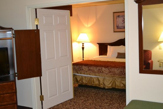Wingate by Wyndham Atlanta Galleria Center: Bedroom