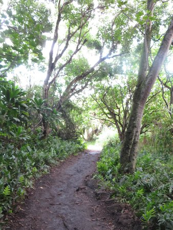 Trail to Ohe'o Gulch & Kuloa Point